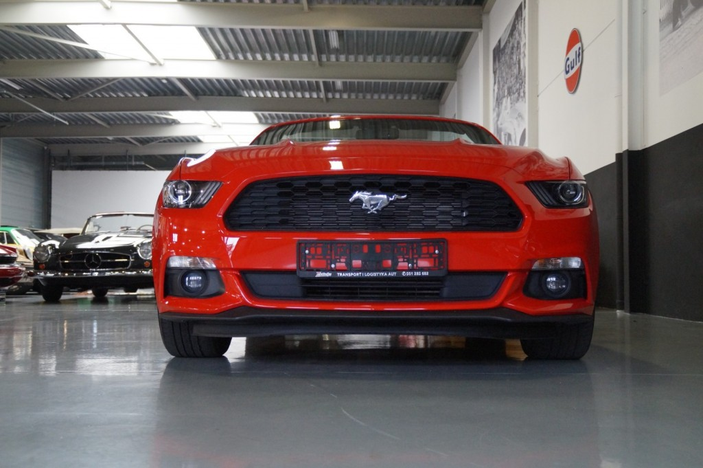 Buy this FORD MUSTANG 2016  at Legendary Classics (18)